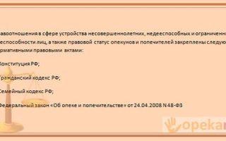Права и обязанности опекунов и попечителей над несовершеннолетними в россии: полномочия и ответственность