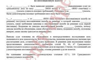 Возражение на исковое заявление о взыскании алиментов (образец) 2019