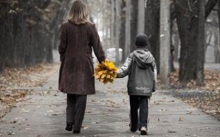 Какие документы нужны для подачи на алименты на ребенка после развода, в браке (без развода) и вне брака - список, перечень документов на алименты на ребенка