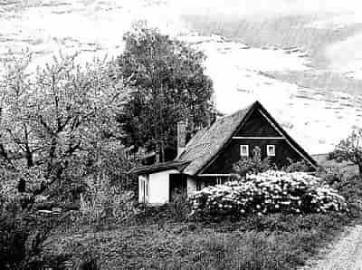 Завещание на земельный участок и дом, как сделать и правильно оформить завещание на дом и землю